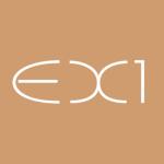 logo-ex1